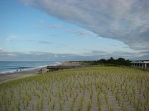 Delaware Seashores State Park Beach